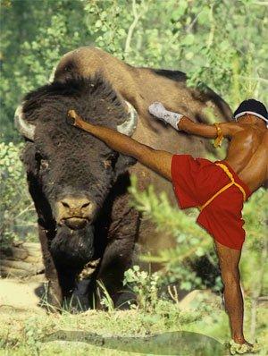 martial-arts0720792321
