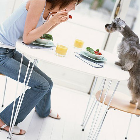 ешь на кухне