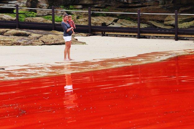 Красные приливы - необычное природное явление на страницах мужского журнала brodude