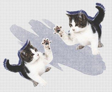 Как по поведению кошки понять, что у нее проблемы со здоровьем